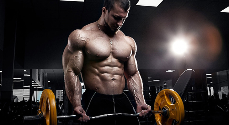 Análogo de undecanoato de testosterona